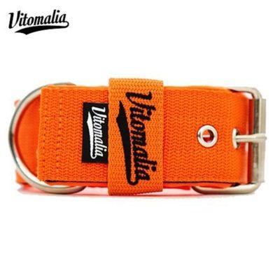 Vitomalia Hundehalsband Basic Edition Orange